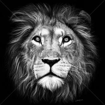 Lion Of Judah (Löwe von Juda)