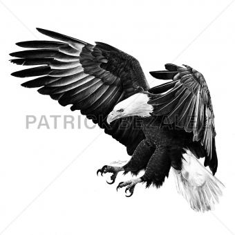 Under The Shadow Of His Wings (Im Schatten seiner Flügel)