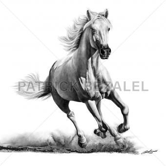 Faithful And True – White Horse (Treu und wahrhaftig – weißes Pferd)