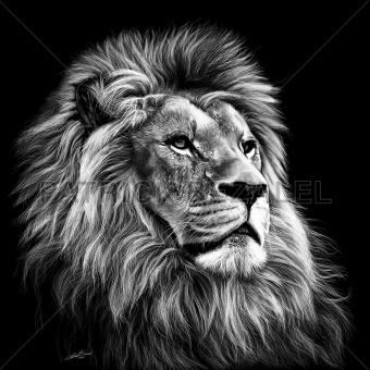 Majesty (Majestät)